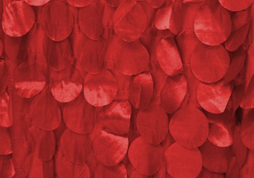 Red Apple Petals
